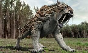 Afbeeldingsresultaat voor t-rex afbeeldingen