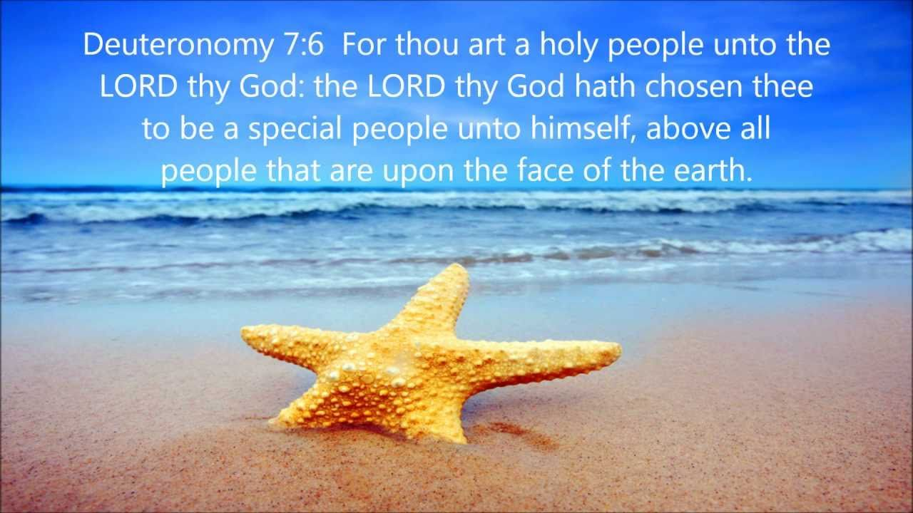 Compelling Self Bible Verses Your Self Self Self Bible Verses About Success Bible Verses Life Bible Verses About Success School Your Self Self Victory Victory
