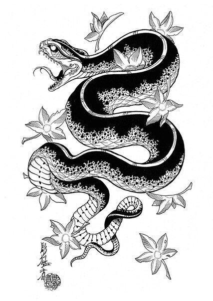 5e1d5f136adc14a4cf715bb82df8b180 Jpg 427 604 Snake Tattoo Design Japanese Snake Tattoo Japanese Tattoo Designs