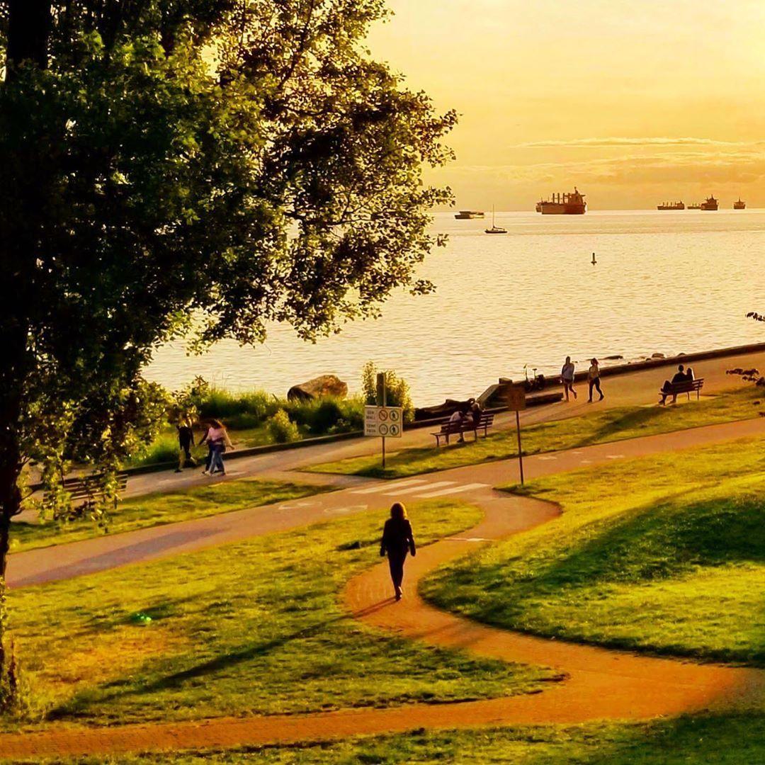 "Alexandre Légère (@legere_photos) posted on Instagram: ""The golden path toward the beach! 💛💛💛 #goldenhour #goldenhourlight #sunsetbeach #seawall #ig_captures #ig_photooftheday #ig_mood…"" • Jun 10, 2020 at 9:46pm UTC"