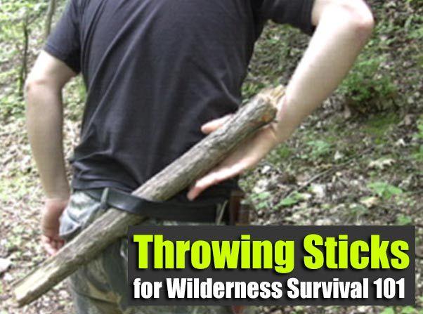 Throwing Sticks for Wilderness Survival 101 - SHTF Preparedness