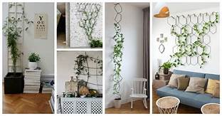 English Ivy Indoor Trellis