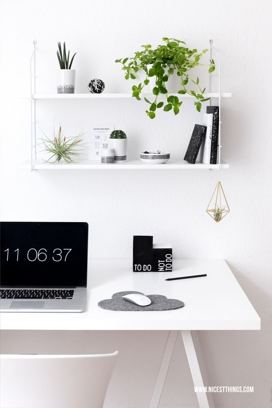 Urban jungle im home office pflanzen deko am schreibtisch for Schreibtisch dekorieren youtube