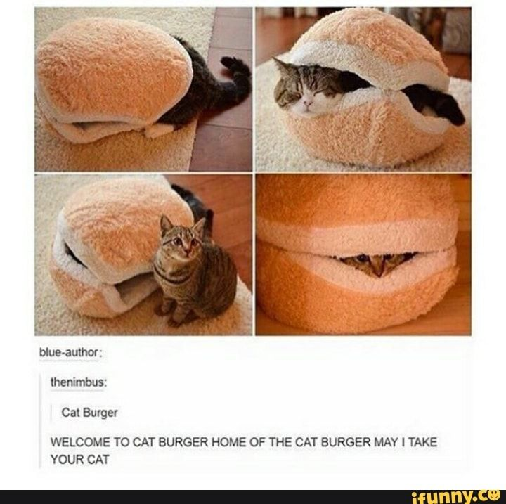 Burger WELCOME TO CAT BURGER HOME OF THE CAT BURGER MAY I TAKE YOUR CAT – iFunny :)