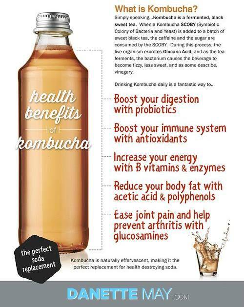 I Love Kombucha Kombucha Benefits Kombucha Kombucha Health Benefits
