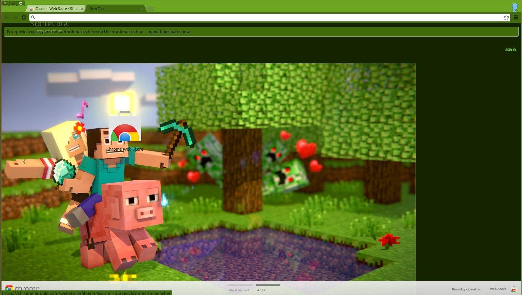 minecraft scenes | The Steve Scene Minecraft Theme applied