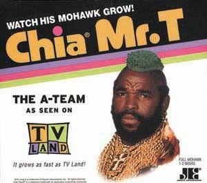 Mr T Chia Pet Because Mr T Chia Pet Mr T Chia Pet Total Awesomeness Kim Miller Chia Pet Eating Chia Seeds Tv Land