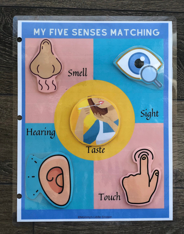 My 5 Senses Busy Binder Worksheet Toddler Learning Binder