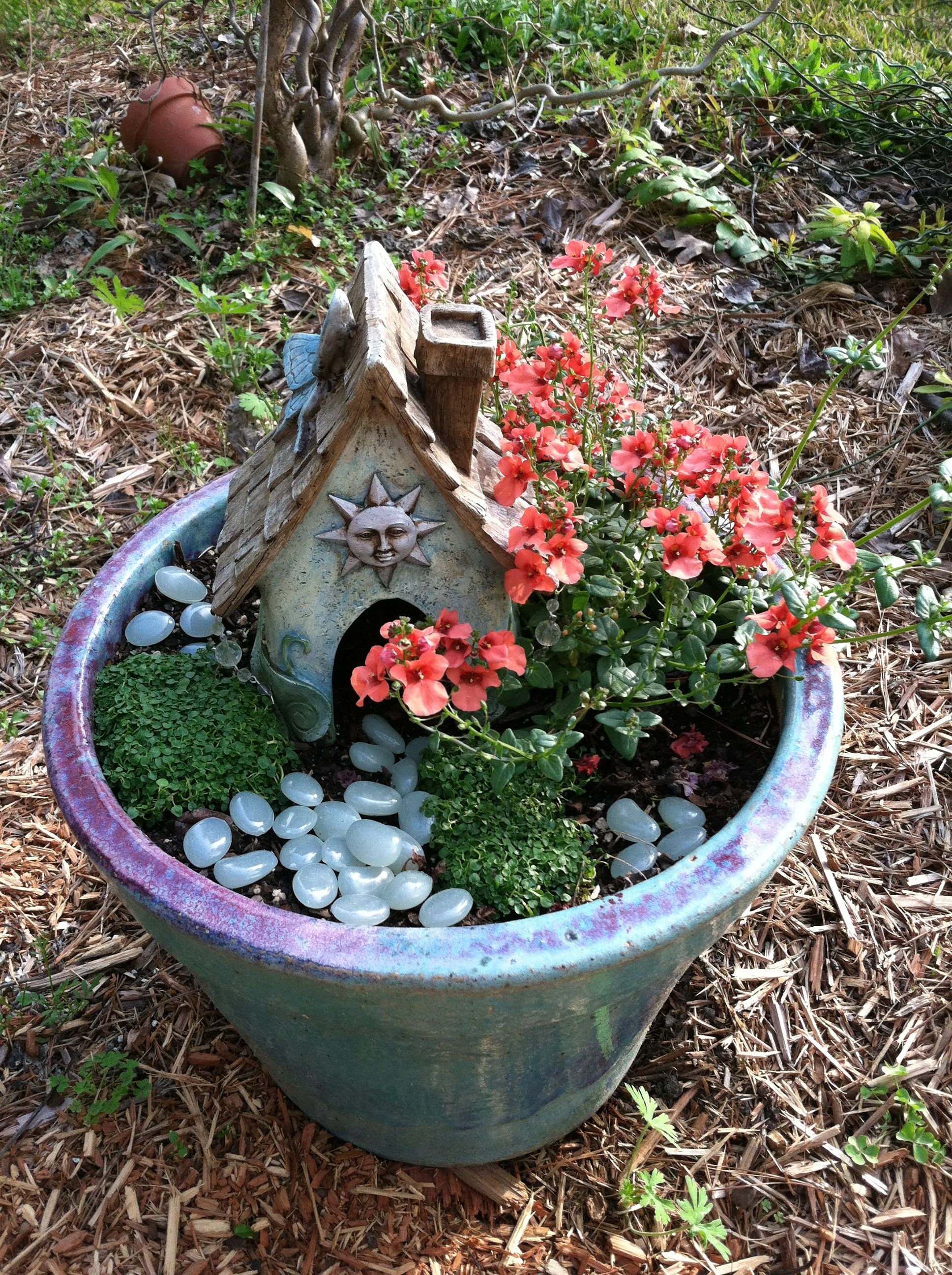 Fairy garden in a pot.  The stones glow in the dark!