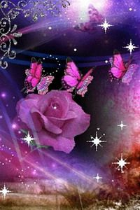 Purple Butterfly Rose Live Wallpaper For Android Android Live