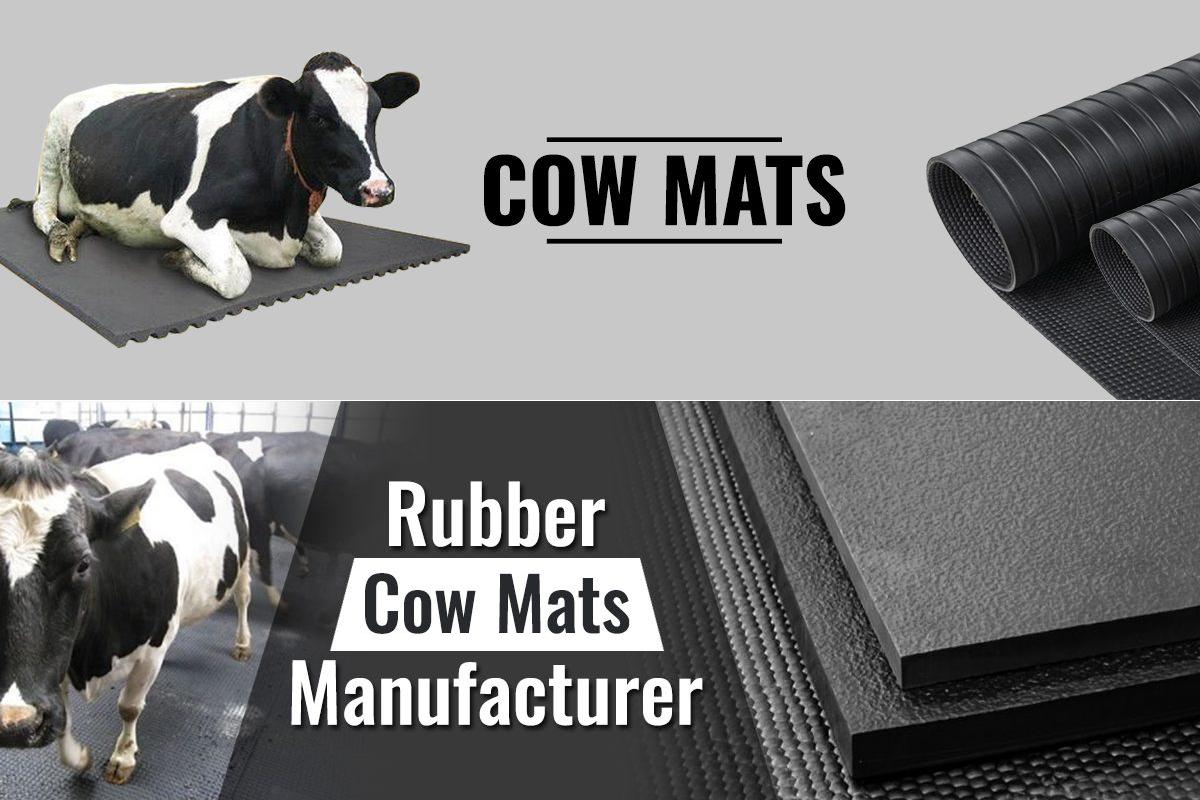 Best Cow Mat In Delhi India Animal Mats Delhi Gym Mat