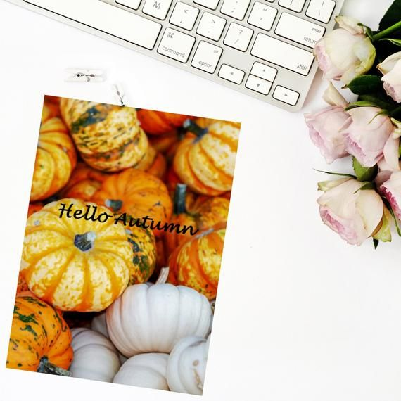 Foiled Photograph Planner Dashboard - Hello Autumn Pumpkins #helloautumn