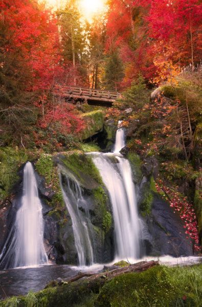 Black Forest Waterfall, Triberg, Germany  photo via watercolor