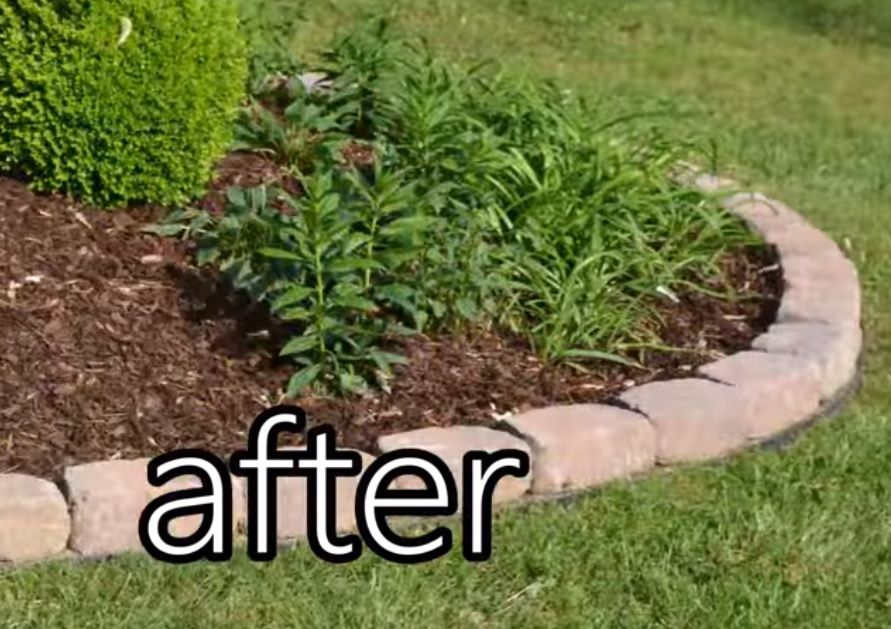 Easy Do It Yourself No Dig Edging With Images Easy Garden