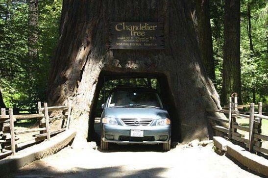 Stops along a good California road trip - Get Lost