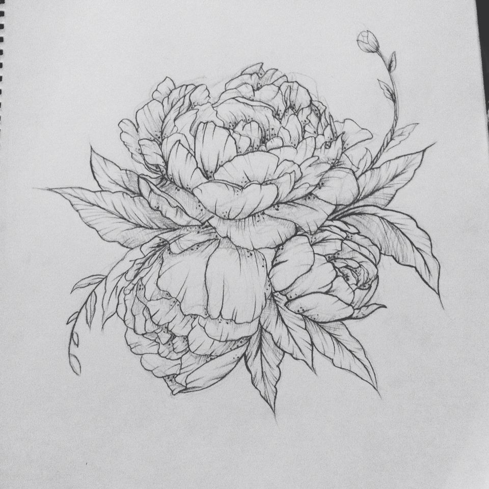 Tattoo Outlines Flowers Black And White: Peony Tattoo. Contact Me For Custom Drawings