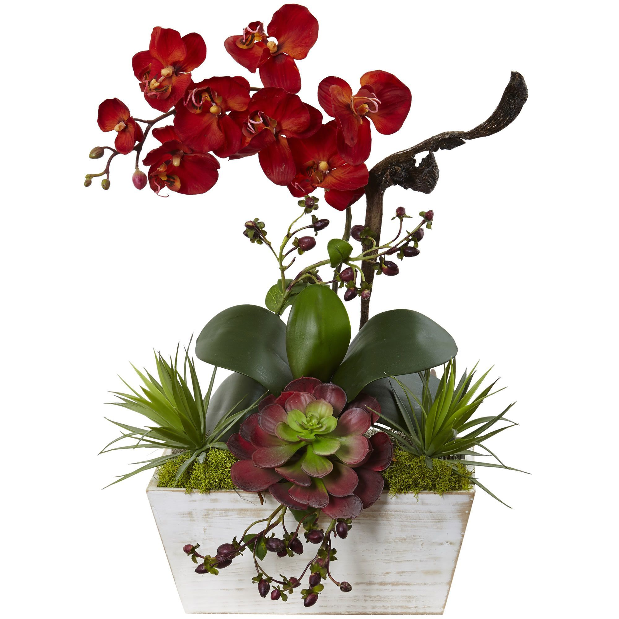 Seasonal orchid and succulent garden wash planter kitchen party the autumn orchid succulent silk flowers with planter will make a warm and welcoming addition to your home or office arrives in a contemporary whitewash mightylinksfo