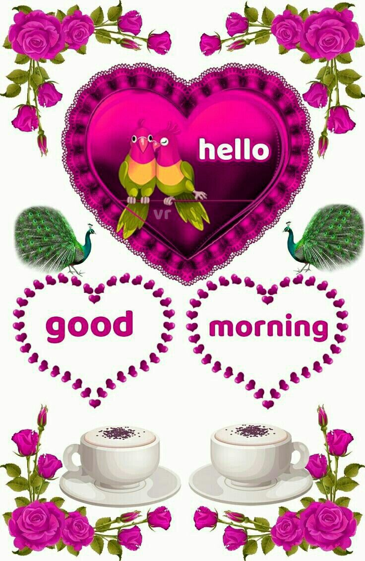 Good Morning Morning Images Pinterest Morning Greetings Quotes