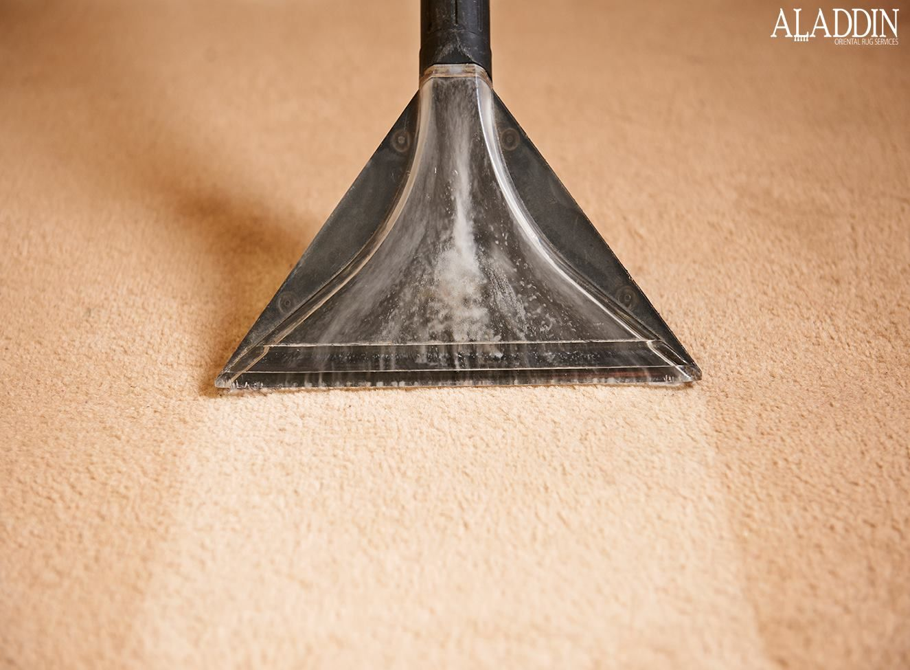 Aladdin Rug Services has been providing quality and reliable carpet and rug cleaning services. We're New Jersey's leading carpet and rug cleaning company and guarantee your satisfaction each and every time.  #RugCleaning #OrientalRugCleaning #OrientalRugRepair #OrientalRugDyeing #OrientalRugRestoration #OrientalCarpetCleaning #CommercialCarpetCleaning #OrientalRugServices #PersianRugCleaning #OrientalAreaRugCleaning #AntiqueOrientalRugCleaning