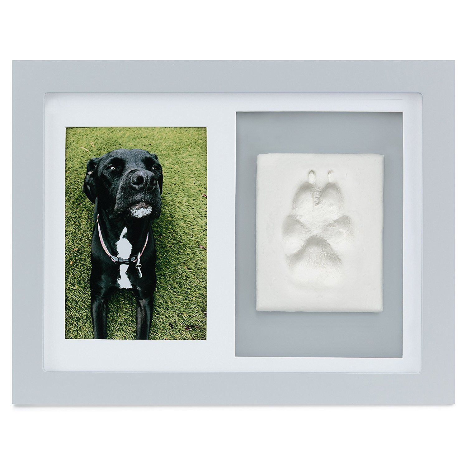 b93a2205bbd7 Paw Prints Keepsake Photo Frame by Better World Pets – Holds 4 x 6 inch  Picture – Memorial Clay Imprint Kit – For Dogs and Cats – Perfect for Pet  Lovers >>> ...