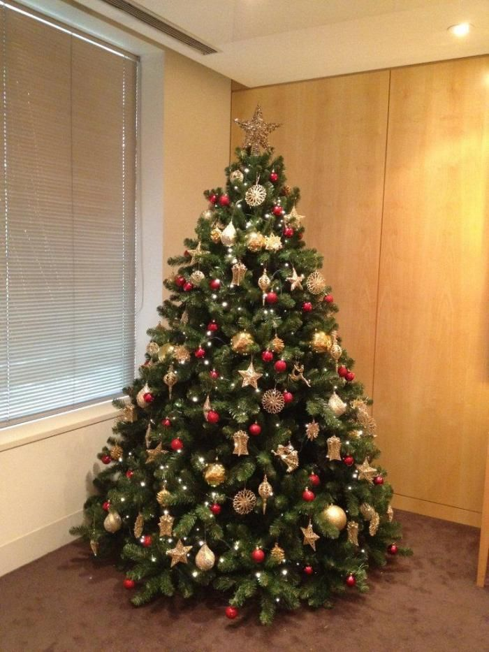 corporate decorated christmas tree tree variety 75ft monarch evergreen