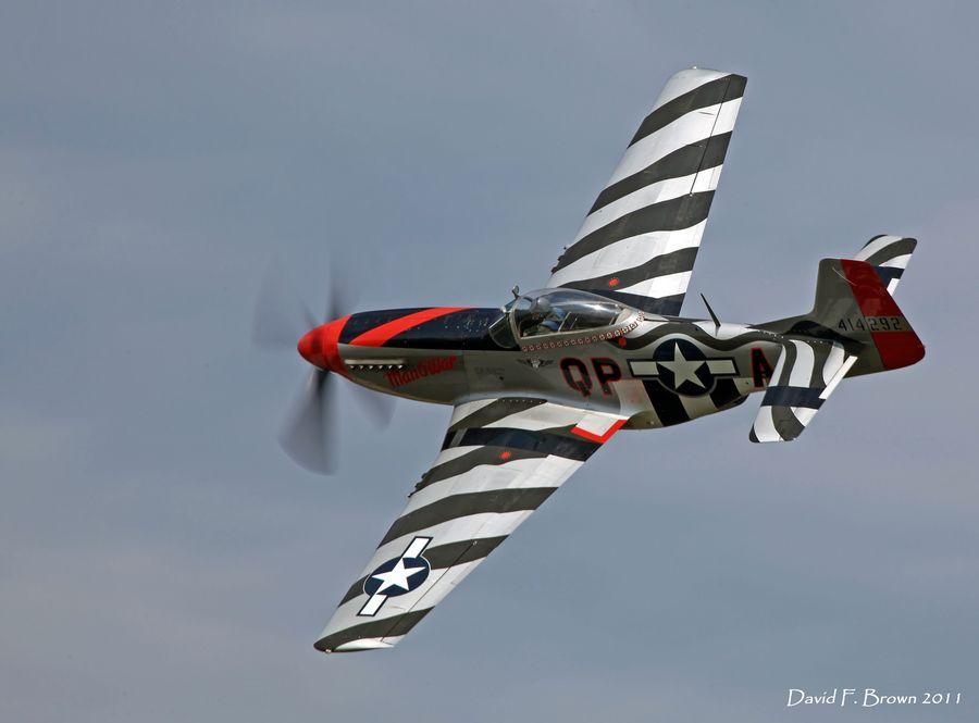 "P-51D Mustang ""Man-O-War"" by David F."