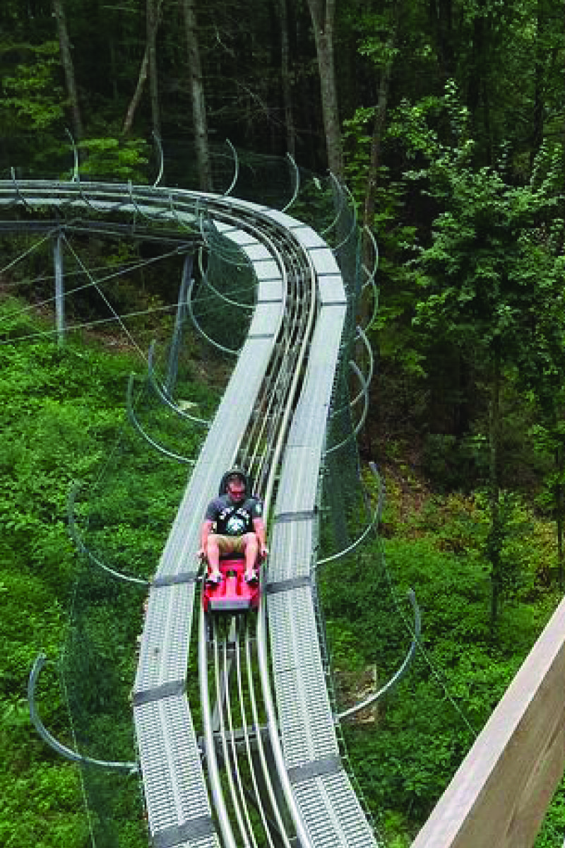 The Mountain Coaster In Tennessee That Will Take Y