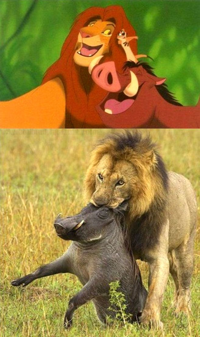 There goes my childhood. Thanks, Lion King.