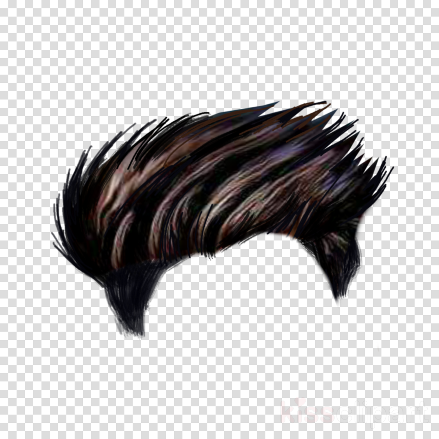 Pin By Md Ripon On Akbar Hair Png Download Hair Photoshop Hair