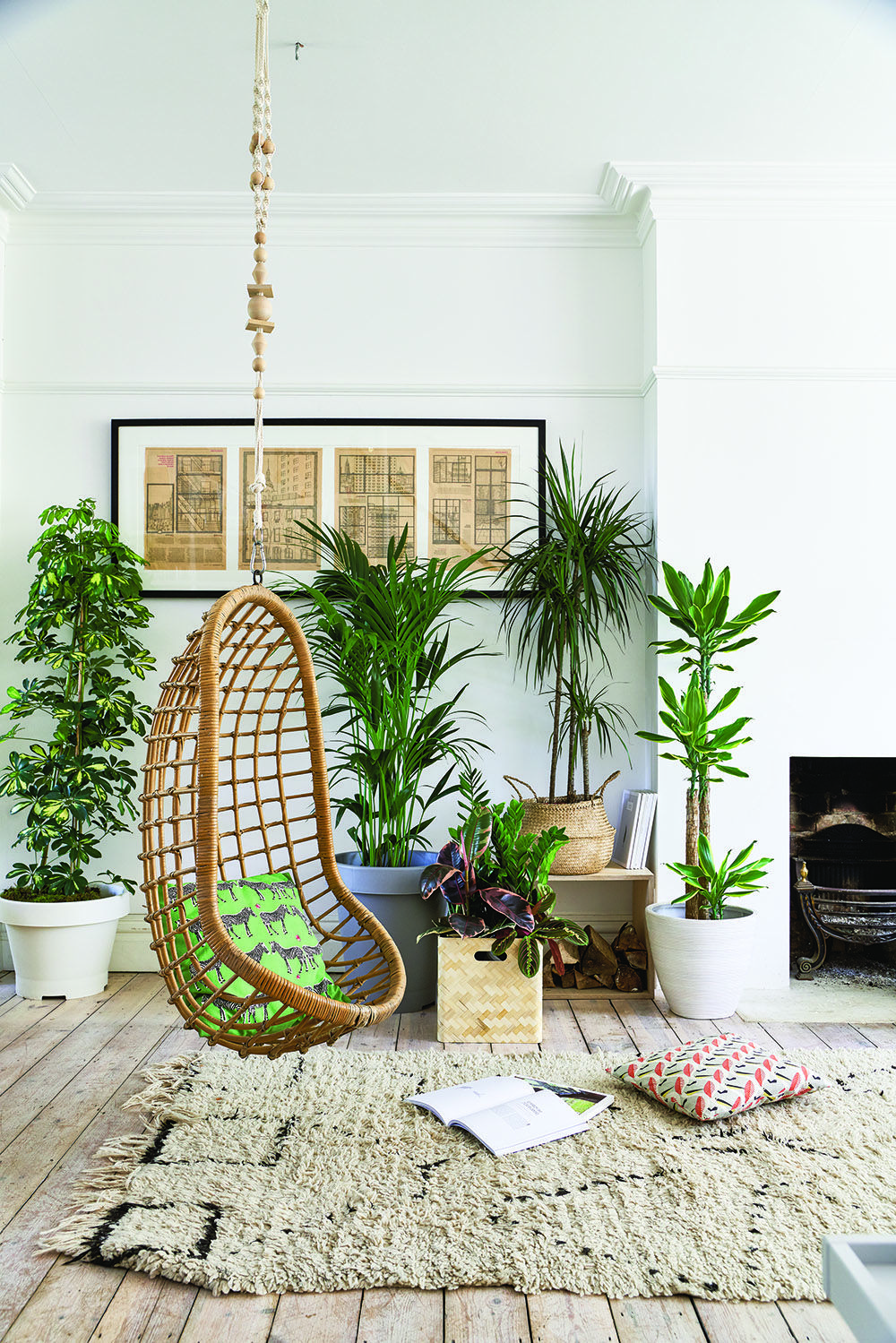 Nice On The Blog  Review Of An Amazing New Book, U0027At Home With Plantsu0027 By Ian  Drummond And Kara Ou0027Reilly, Which We Think Is The Definitive Guide To House  Plants.