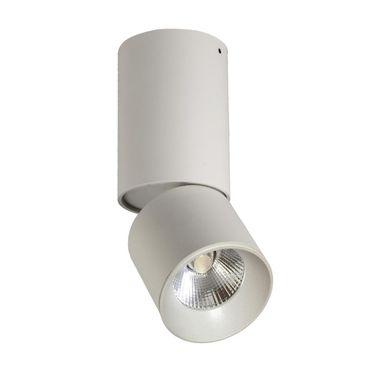 Oprawa Stropowa Natynkowa Nixa Biala Led Polux Platinium Oprawy Natynkowe W Atrakcyjnej Cenie W Sklepach Leroy Merlin Lamp Home Decor Decor