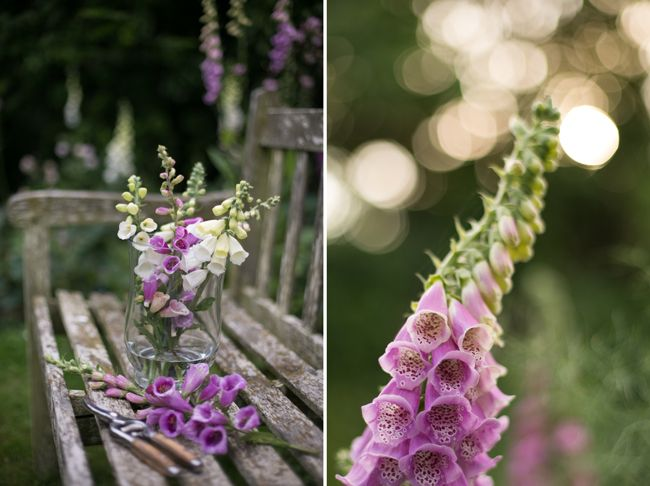 Eva's Photogarden Foxgloves, English Cottage Garden