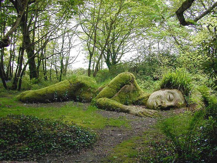 Enchanting Giants The Lost Gardens of Heligan2