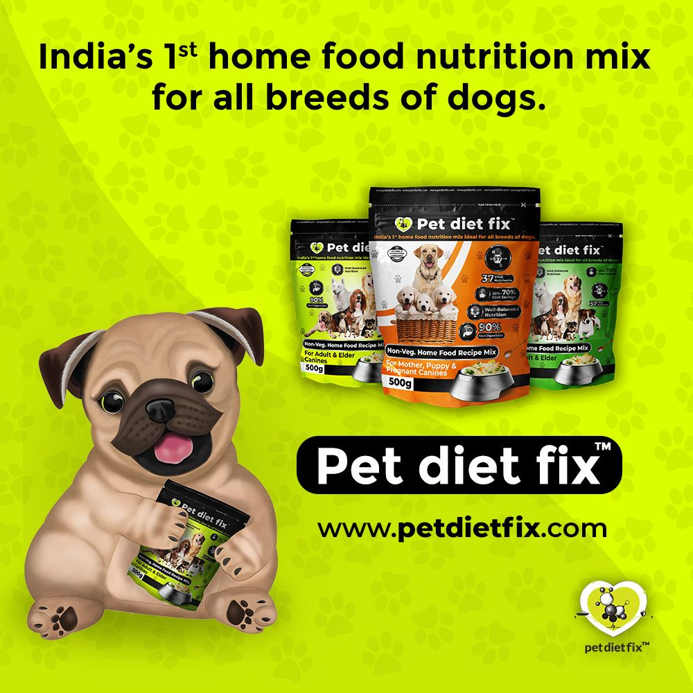 Best Pet Food Brands In India Top Pet Food Brands In India Top