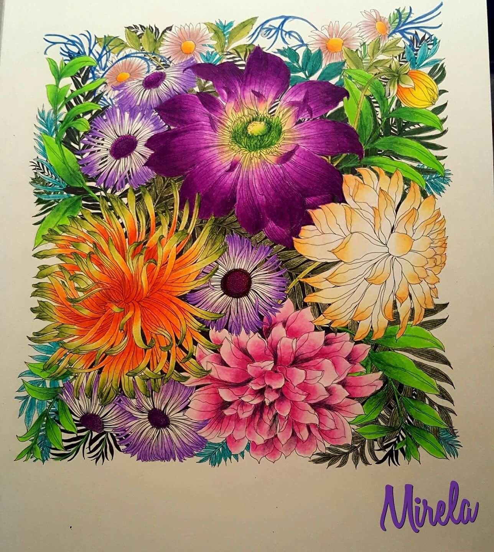 Pin de Shelley Wellar en Floribunda | Pinterest | Flores