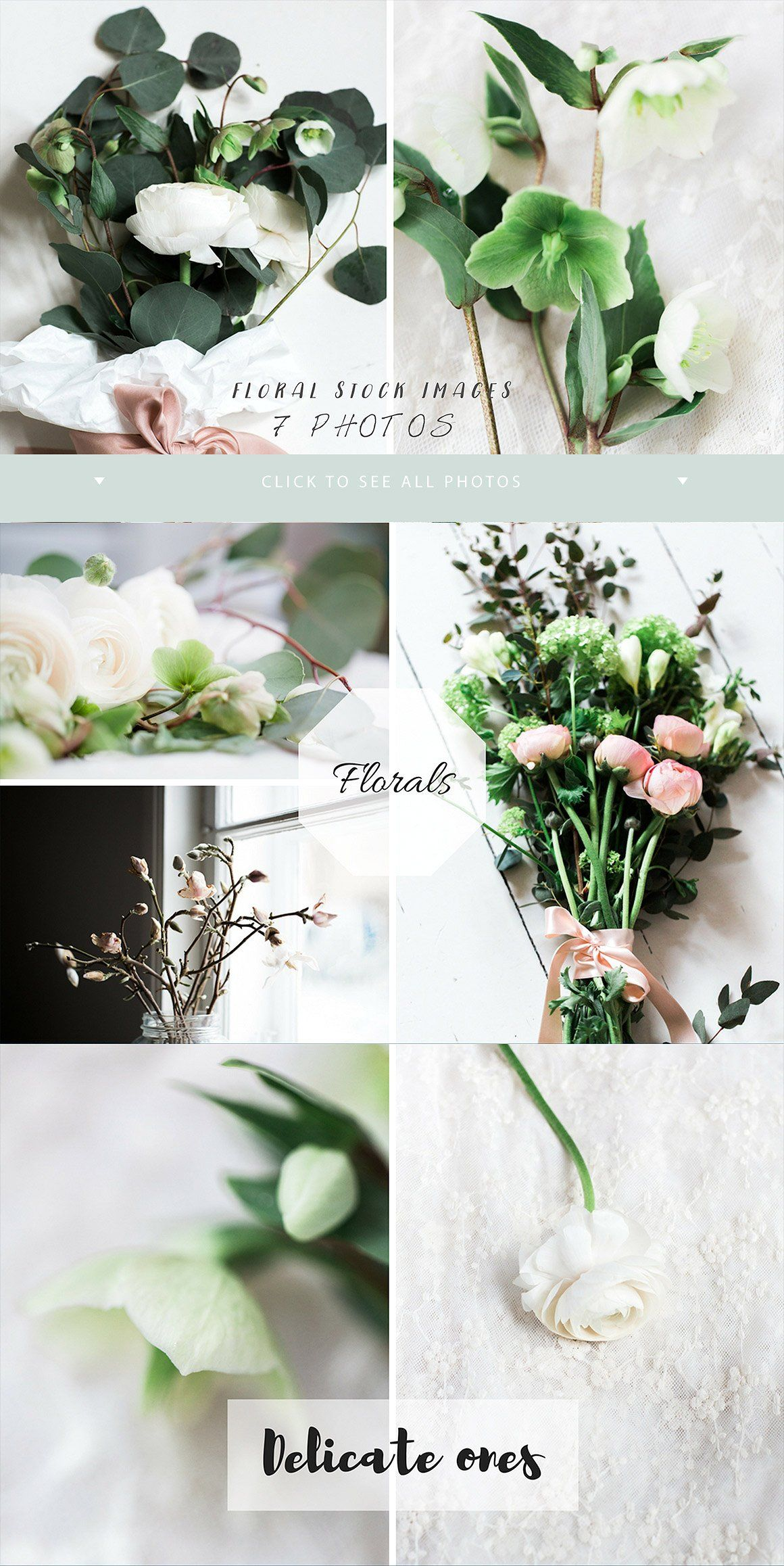 Flower Stock Photos White Winter 7 Product Mockups Group