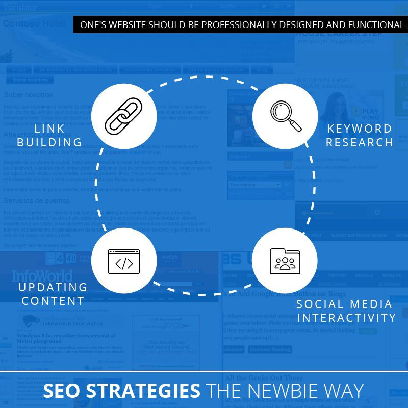 SEO Strategies The Newbie Way
