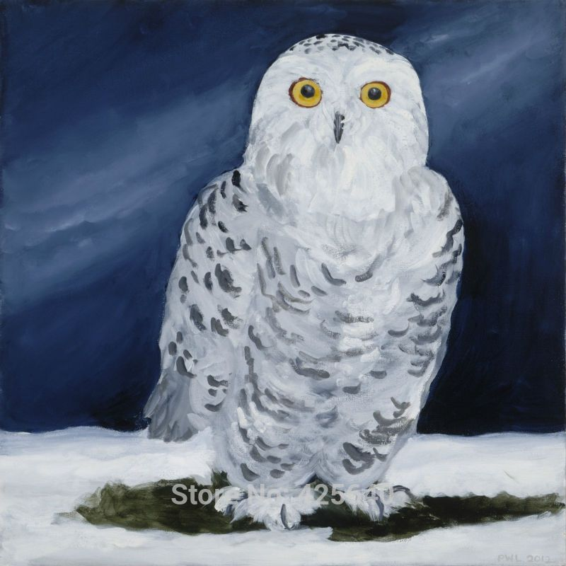 Aliexpress.com : Buy Home Decor Snowy owl Painting Home Decoration Oil painting Wall Pictures for living room Home Decorpaints Wall art paint from Reliable pictures of oil paintings suppliers on Eazilife Oil Painting    Alibaba Group