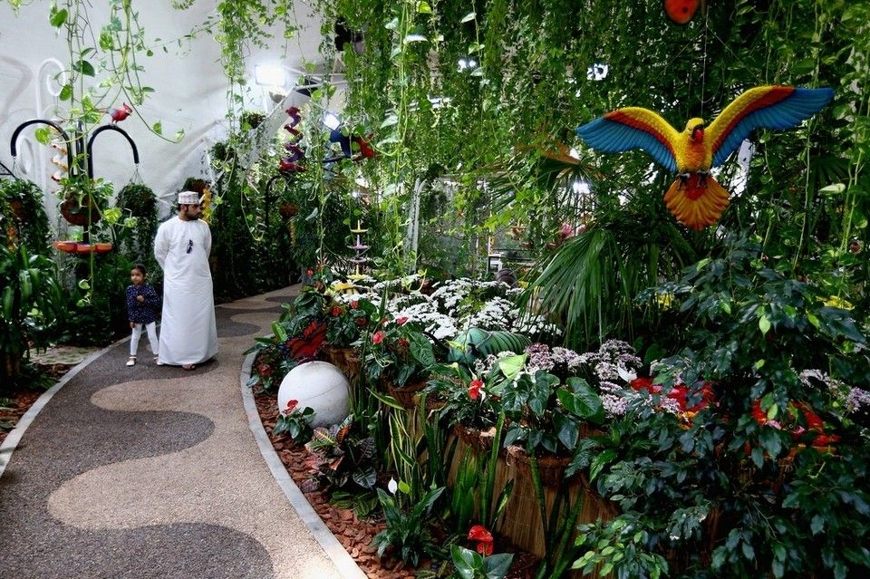 A Summer Day Visit To The Dubai Butterfly Garden In Pictures The National Butterfly Garden Animal Decor Animal Nursery