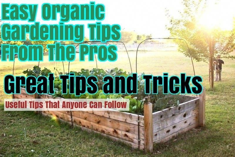 Landscaping Tips The Best Tips For A Successful Farming You Can Find More Details By Visit Landscape Design Organic Gardening Tips Garden Landscape Design