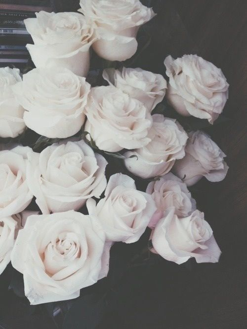 2 Tumblr White Roses Flowers Black And White Aesthetic
