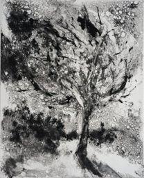 The Great Tree and Night Sky ( Monoprint ) 19 x 23.5  cm.jpg (208×256)