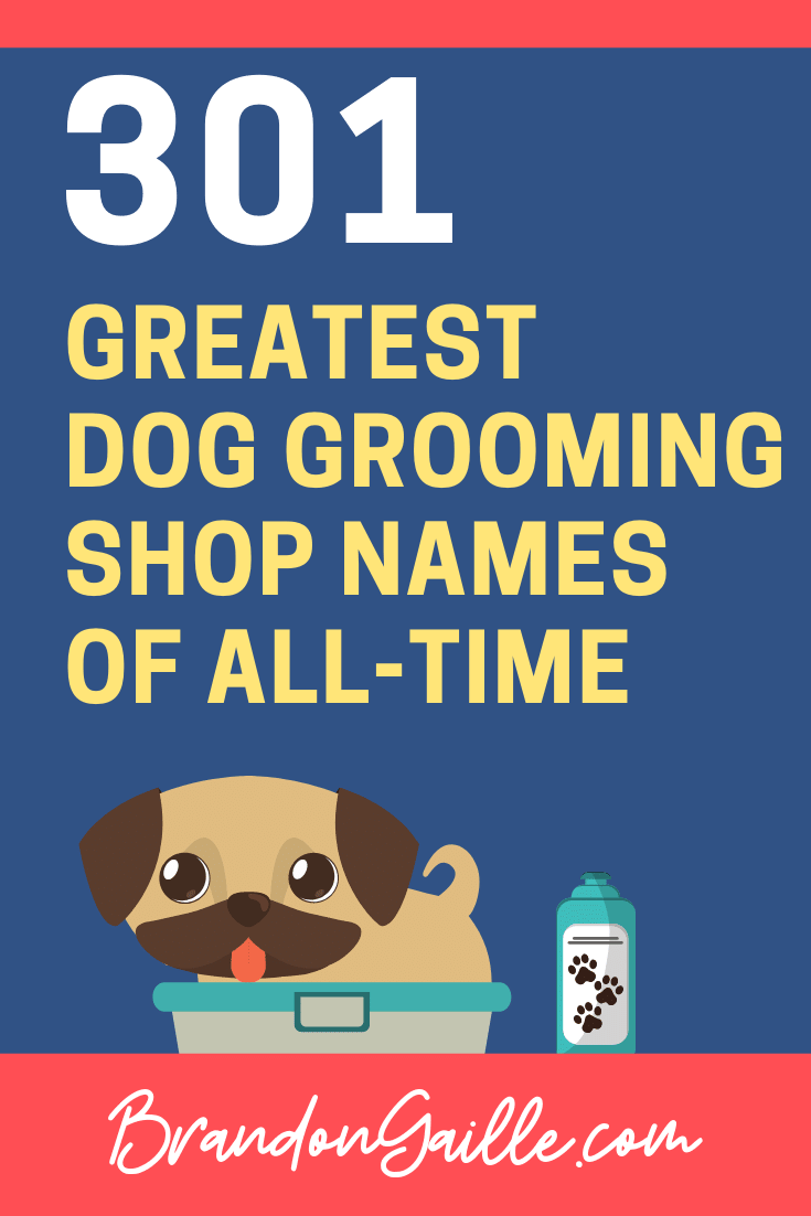 Business Names For Dog Grooming Businesses