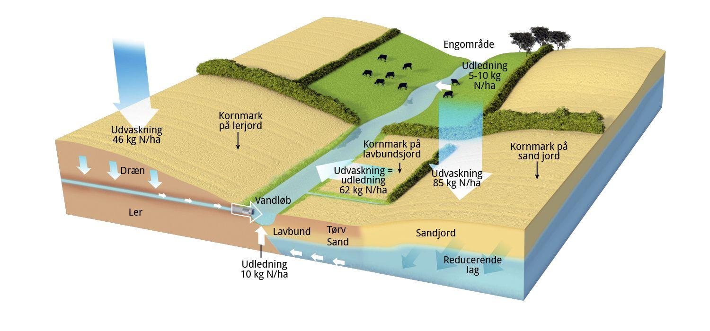 jordbundstyper