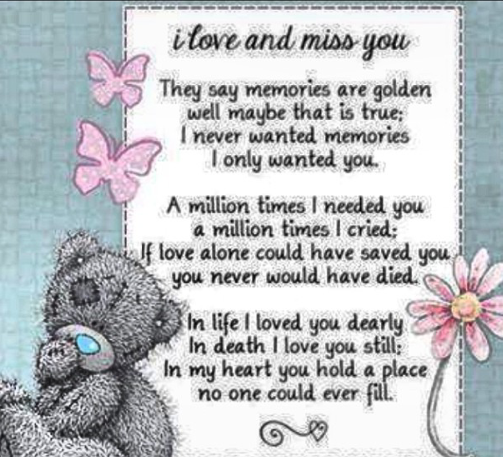 Rip Noah Quot I Love And Miss You A Million Times I Needed