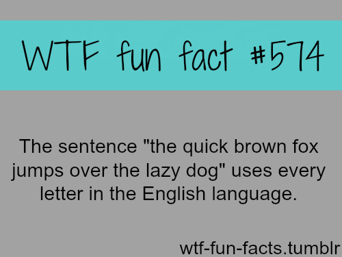 Latest Funny Facts  practice writing all letters using one sentence 6