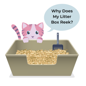 how to reduce litter box odor