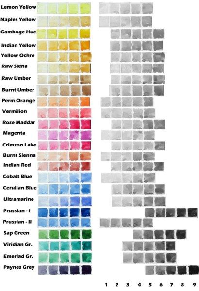 Value Scale Of Different Watercolor Paints Of Camlin Artist Tubes