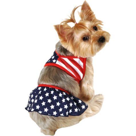 American Flag Dog Bikini Party City Patriotic Dog Dog