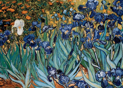 van Gogh - Irises - 1000 piece puzzle. 26.5 x 19.25 inches. Superior - quality piece by piece, Perfect and easy - fit puzzle pieces, Strong high - quality unbreakable puzzle pieces, Made from recycled board, Image printed on recycled paper, Ink is vegetable based. This superior quality puzzle will delight and educate all at the same time.